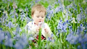 baby_photo_shoot_in_bluebells