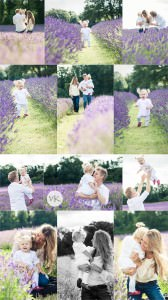lavender-fields-family-photo-shoot