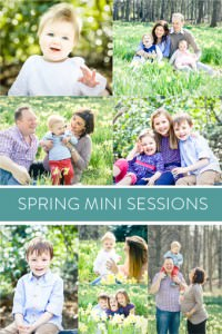 spring-mini-sessions-2015