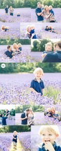 lavender-fields-photo-shoot