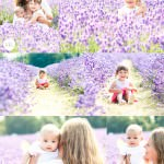 child-photographer-lavender-fields-surrey