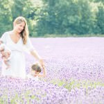 vicki-knights-photography-lavender