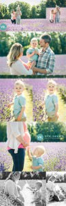 lavender-toddler-photo-shoot-vicki-knights