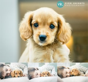 fb-puppy-child-photography-surrey-guildford-vickiknightsphotography