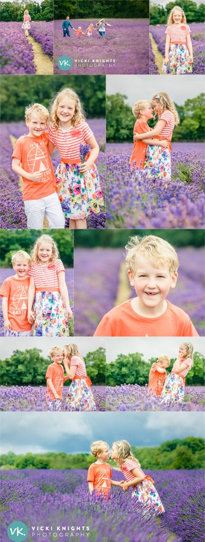 lavender-child-photo-shoot-vicki-knights