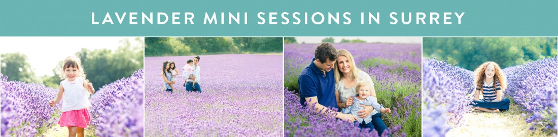 lavender-mini-session-surrey-1