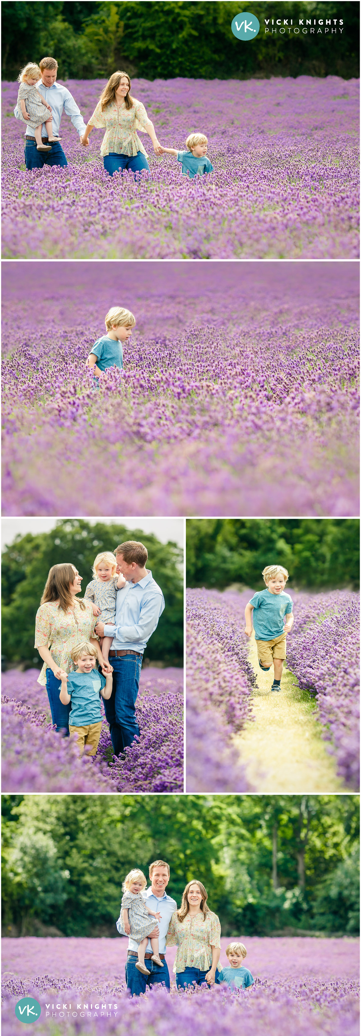 lavender-family-photo-shoot