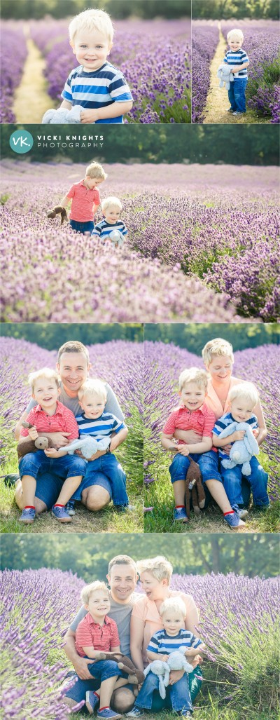 lavender-family-photo-shoot-2