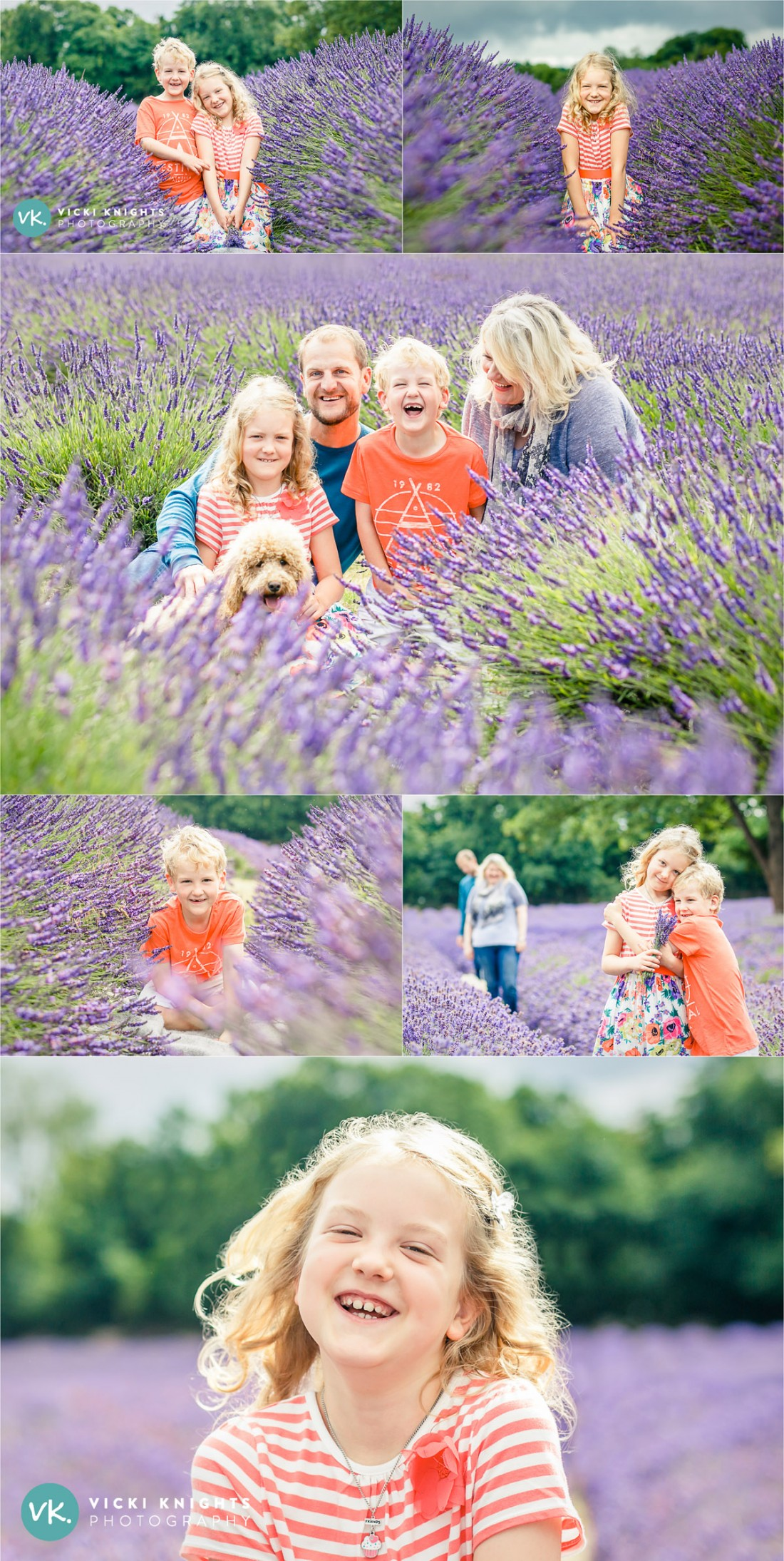 lavender-family-photo-shoot-vicki-knights