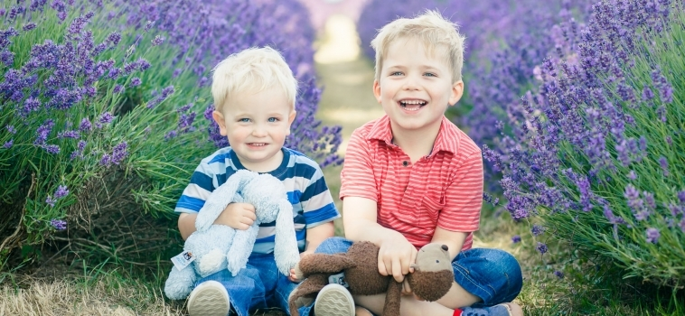 Family photo shoot in the lavender fields in Surrey