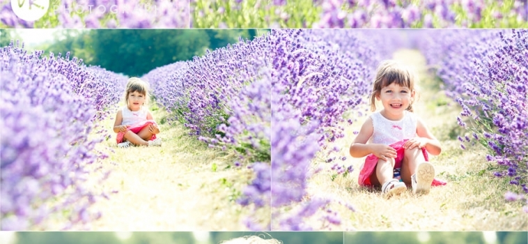 A mini photo shoot in the lavender fields – part three