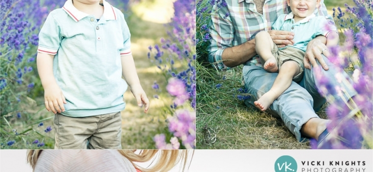 A pregnancy and toddler photo shoot at the lavender fields